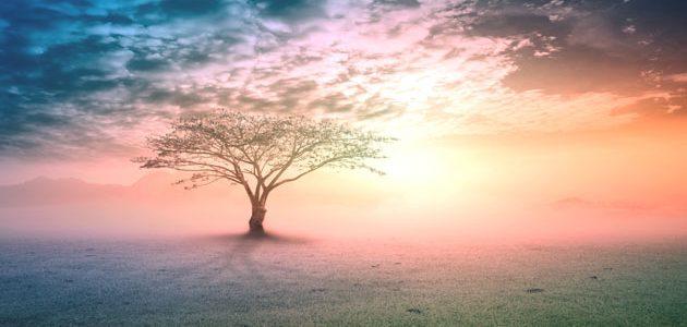 The Greatest Prophets between Christianity and Islam: 1-Prophet Adam