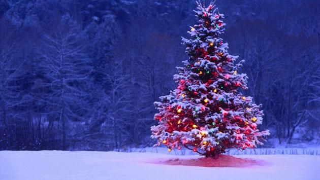 Christmas between Christianity and Islam