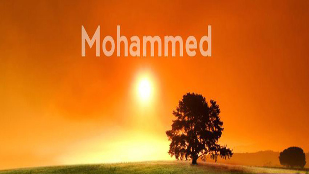 How did Prophet Muhammad React to Personal Abuse?